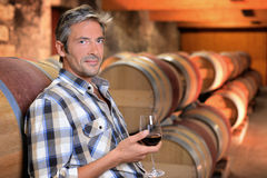 Winemaker drinking wine. Smiling winemaker standing in wine cellar with glass royalty free stock photo