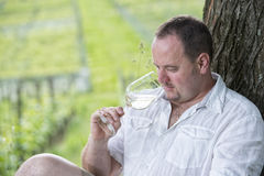 Winemaker drinks white wine. Winemaker tasting a glass white wine in the vineyard Stock Photography