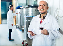 Winemaker examining sample of wine Royalty Free Stock Image