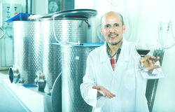 Winemaker examining sample of wine Royalty Free Stock Images