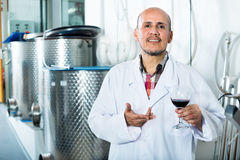 Winemaker examining sample of wine Stock Photography