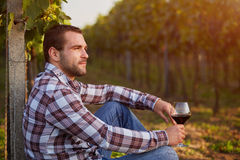 Winemaker with a glass of red wine. Winemaker siting in vineyard with a glass of red wine, toned royalty free stock photography