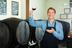Winemaker holding glass of wine in cellar Stock Photography