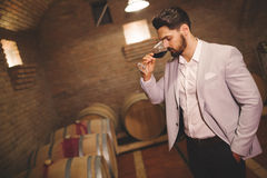 Winemaker inspecting wine in basement Royalty Free Stock Image