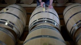 Winemaker Making Wine in Barrel Cellar