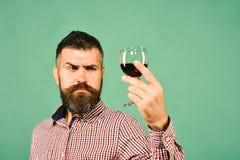 Winemaker met geconcentreerd gezicht houdt wijnglas Wijnbouw en de herfstconcept royalty-vrije stock afbeeldingen