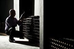 Winemaker que verifica garrafas de vinho em uma adega escura fotografia de stock