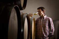 Winemaker in riechendem weißem Wein des Kellers im Glas. Lizenzfreie Stockfotografie
