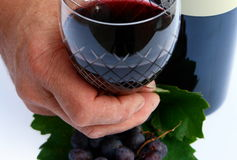 Winemaker's Glass. A winemaker holding a glass of wine in his hand. Black grapes are also seen on the surface below his hand stock photos