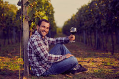 Winemaker siting in vineyard Royalty Free Stock Photography