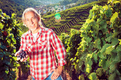 Winemaker Sitting By His Vineyard Royalty Free Stock Image
