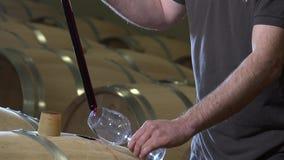 Winemaker smaczny wino w lufowym lochu zdjęcie wideo