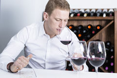 Winemaker smelling a red wineglass. Young man on a wine tasting session on the olfactory phase with the wineglass in the nose is writing down in a wine tasting Royalty Free Stock Photo