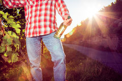 Winemaker Standing By His Vineyard Stock Photo