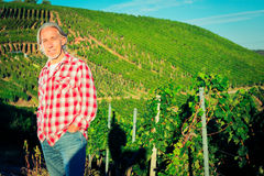 Winemaker Standing By His Vineyard Royalty Free Stock Photography