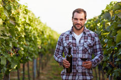 Winemaker in vineyard Royalty Free Stock Photo
