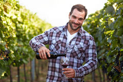 Winemaker in vineyard Royalty Free Stock Photography