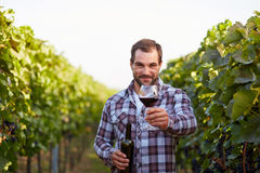Winemaker in vineyard Stock Image