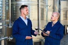 2 winemakers проверяя вверх по образцу вина в стекле Стоковые Изображения RF