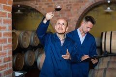 2 winemakers с образцом вина в погребе Стоковые Изображения