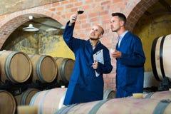 2 winemakers с образцом вина в погребе Стоковая Фотография