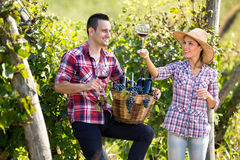 Winemakers checking quality of wine Royalty Free Stock Photography