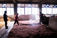 Winemakers dans le Chinois Photographie stock
