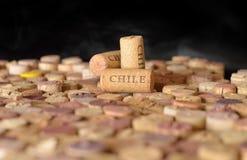 Winemakers van landen De naam van Chili ` s op wijn kurkt Royalty-vrije Stock Foto