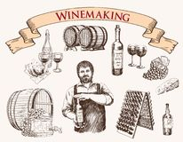 Winemaking. the production of sparkling wines. The production of sparkling wines. set of vector sketches Royalty Free Stock Image
