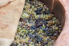 Winemaking Royalty Free Stock Photos