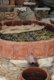 Winemaking Stock Image
