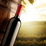 Winemaking Stock Photo
