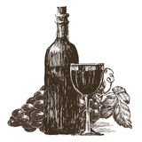 Winemaking, wine on a white background. sketch Stock Image