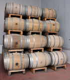 Wineproduktion Royaltyfri Foto