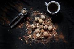 Winer esté como Tuercas Café foto de archivo libre de regalías