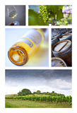 Wineries. Viticulture and French wineries on a collage Royalty Free Stock Photo