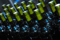Winery 2 Royalty Free Stock Image