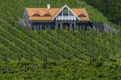 winery images libres de droits