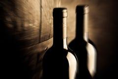 winery obrazy stock