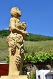 winery zdjęcie stock
