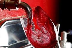 winery zdjęcia royalty free