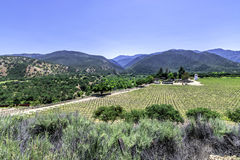 Winery along Monterey County road highway G16 Royalty Free Stock Photo