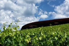 The winery of Antinori nel Chianti Classico. Florence my city, my love stock photos