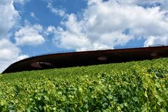 The winery of Antinori nel Chianti Classico. Florence my city, my love royalty free stock photography