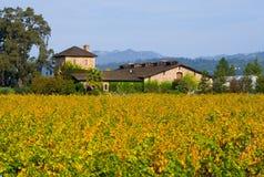 Winery in autumn Stock Photos