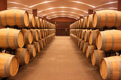 Winery barrels. Placed in a cellar for storing wine Royalty Free Stock Photos