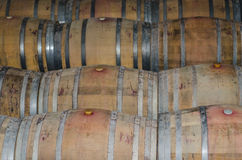 Winery barrels Royalty Free Stock Photography