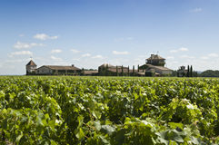 Winery in Bordeaux Royalty Free Stock Photo