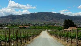 Winery in British Columbia Stock Photo