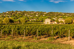Winery Building and Vineyard-Provence,France Stock Images